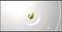 Clean Flip Logo - 26